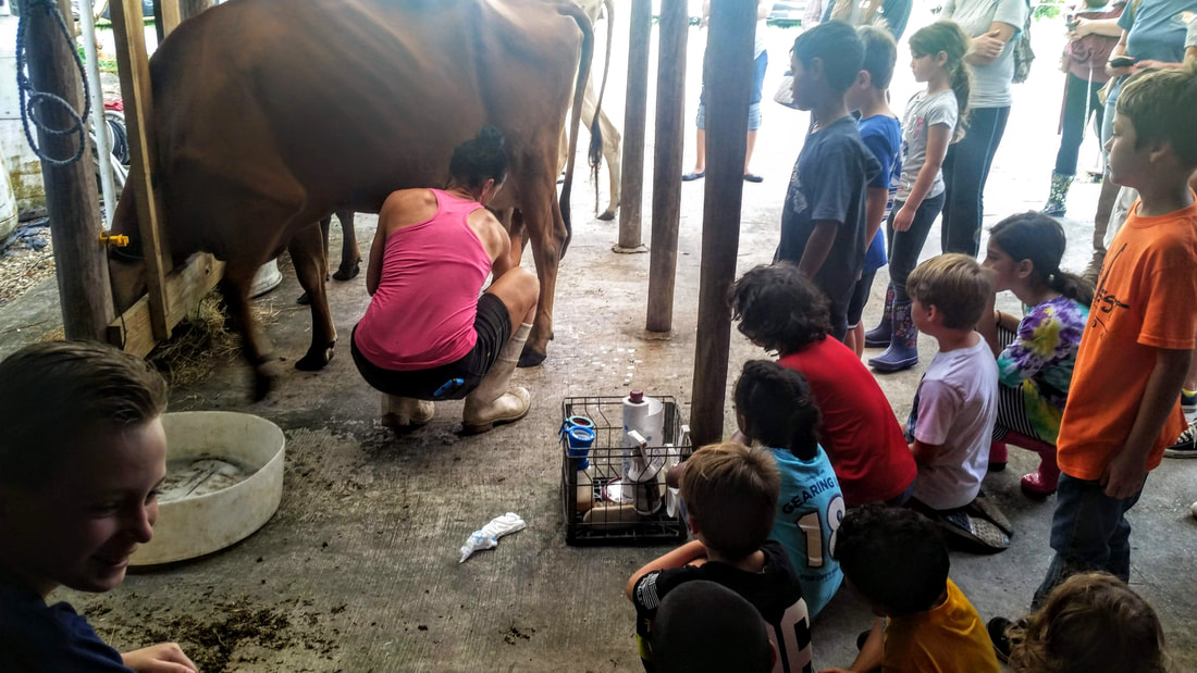 Homeschool Palm Beach Jupiter Creamery